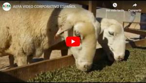 La alfalfa deshidratada y su proceso de elaboración