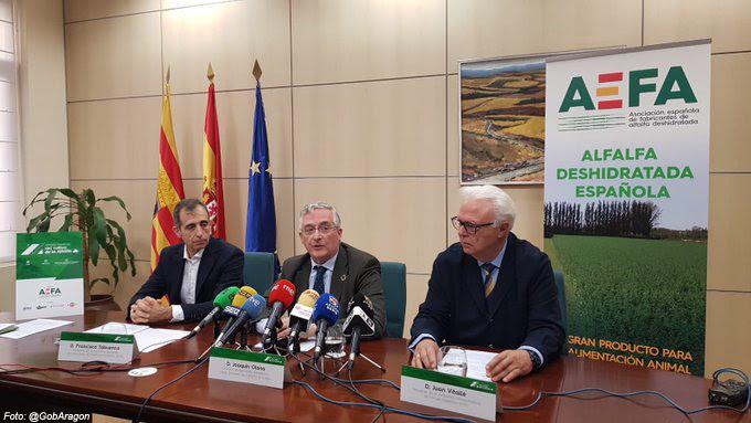 España es una potencia a nivel mundial en la producción y exportación de alfalfa